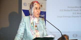 Green, Resilient Infrastructure Is Requisite for Sustainable Development, Official