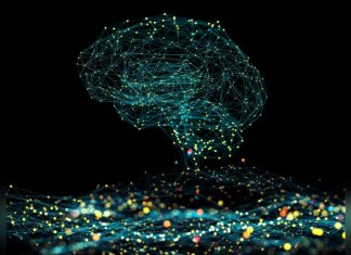 Study: Machine Learning Helps Doctors Diagnose Severity of Brain Tumors