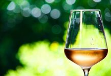 Study: How alcohol in moderation has a positive effect on impaired immune reactions