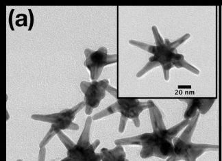 Study: Silver-plated gold nanostars detect early cancer biomarkers