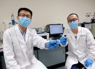 Researchers led by NTU Singapore identify new catalysts for more efficient water splitting
