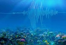 Study: Undersea earthquakes shake up climate science