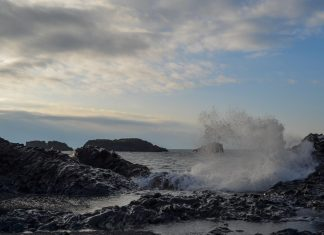 Study: Ocean uptake of CO2 could drop as carbon emissions are cut