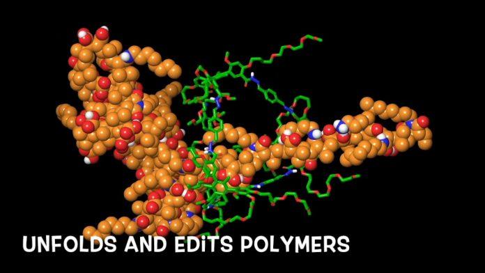 Study: 'Nanocage' tool untangles (molecular) spaghetti