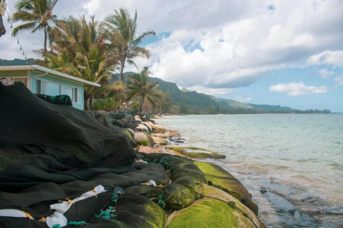 Study: 40% of O'ahu, Hawai'i beaches could be lost by mid-century