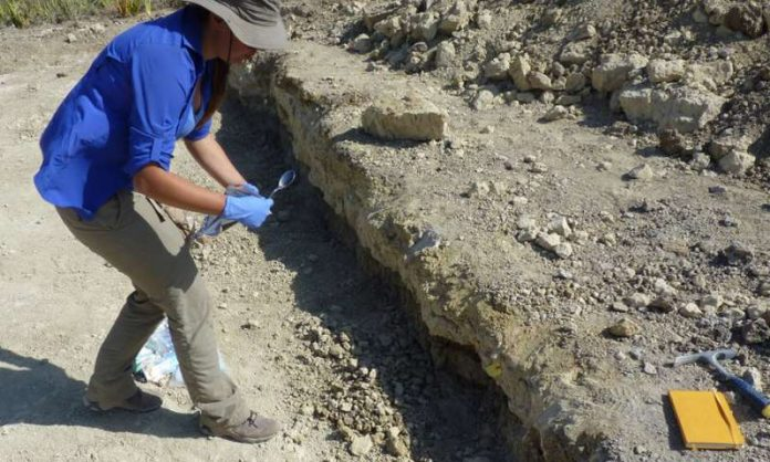 Study: Did our early ancestors boil their food in hot springs?