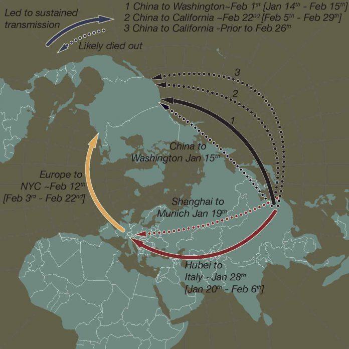 Study: How coronavirus took hold in North America and in Europe