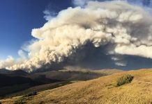 Study: New fire containment research addresses risk and safety