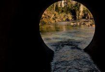 Study project to analyze human viruses in Winnipeg's rivers