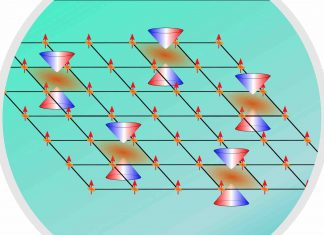 Researchers observe complex tunable magnetism in a topological material